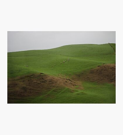 On The Way To Hobbiton Photographic Print