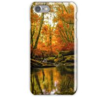 Overflow ~ Fall Colors ~ iPhone Case/Skin