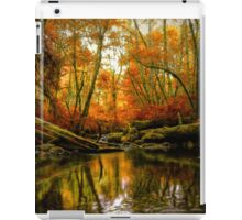 Overflow ~ Fall Colors ~ iPad Case/Skin