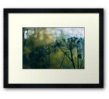 The Fairy World Framed Print