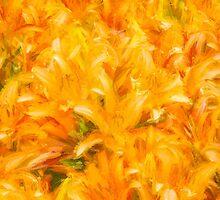 Dig Into Orange Supreme by Marilyn Cornwell