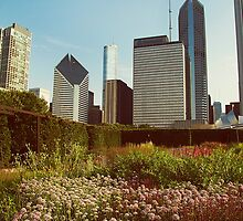 Early Morning, Chicago. by Sarah Wigley