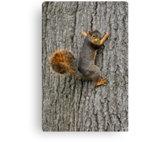 Okay...who super glued the tree?!?! Canvas Print