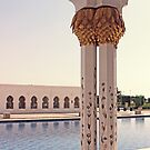 Zayed Grand Mosque by Omar Dakhane