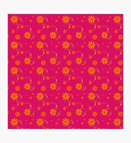 Orange Daisy Flowers on Hot Pink Background Photographic Print