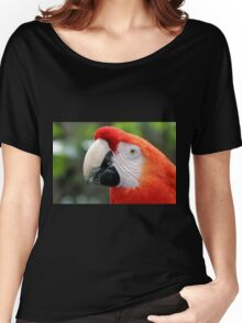 Scarlet Macaw Women's Relaxed Fit T-Shirt