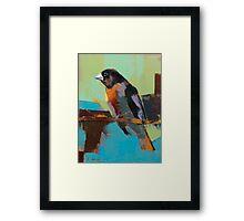 bird 11 Framed Print