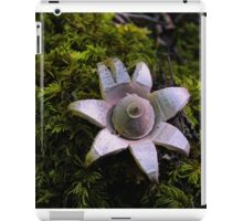 Earth Star Puffball iPad Case/Skin