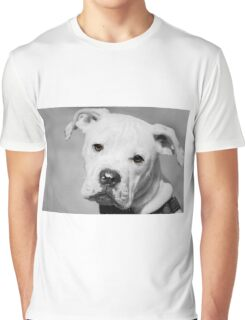 Can We Go For A Walk Now?  Graphic T-Shirt
