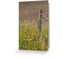 Fences In Full Sun Greeting Card