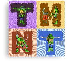 Hero Turtles Canvas Print