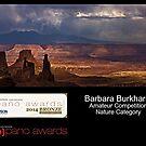 Epson Bronze Award 2014 by Barbara Burkhardt