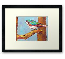 Bird xy Framed Print