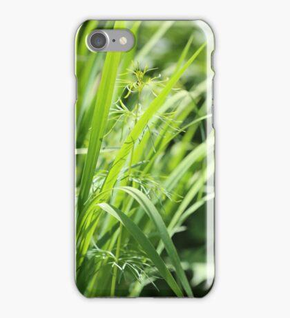 Singular iPhone Case/Skin