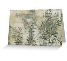wild grass 30 Greeting Card
