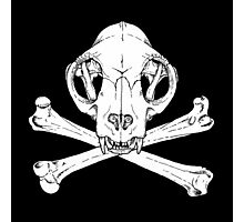 Cat Jolly Roger Photographic Print