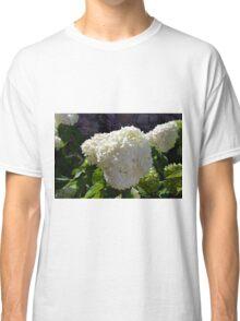 Beautiful white large round flower Classic T-Shirt