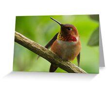 HUMMINGBIRD STRETCH Greeting Card