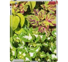 Colorful pattern of leaves iPad Case/Skin