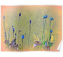 Opium Seeds Against An Old Wall Poster