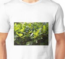 Green leaves background Unisex T-Shirt