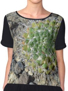 Small round cacti on the ground Chiffon Top