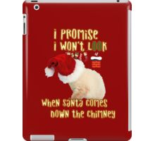 Cat Christmas Gifts for People a Cute Kitten Gift idea iPad Case/Skin