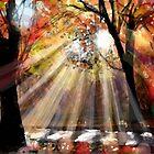 Autumn 4  by AngieBraun