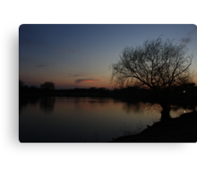 A Bare Willow Tree Canvas Print