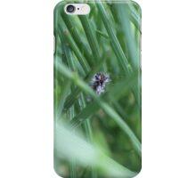 Wet Caterpillar iPhone Case/Skin