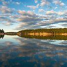 Horton Bay late Fall by toby snelgrove  IPA