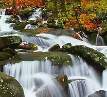 CASCADE,NEWFOUND GAP ROAD by Chuck Wickham