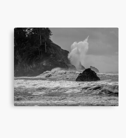 There She Blows blow hole in Trinidad California Canvas Print