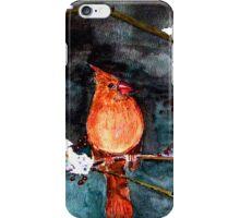 Winter Bird iPhone Case/Skin