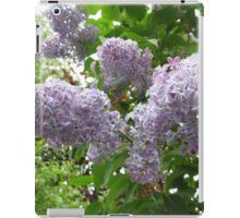 Lilac 6 iPad Case/Skin