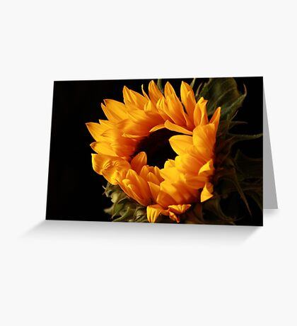 The Sun on Earth ... and She Shines  Greeting Card