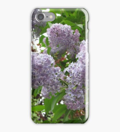 Lilac 6 iPhone Case/Skin