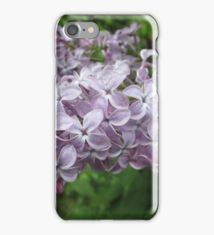Lilac 5 iPhone Case/Skin