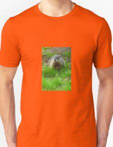 Chuckster T-Shirt