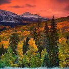 Autumn Dawn Over Kebler Pass by John  De Bord Photography