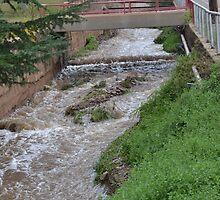 Water Ditch Beside the Tombstone Cyn. Rd. in Bisbee by Ann  Warrenton