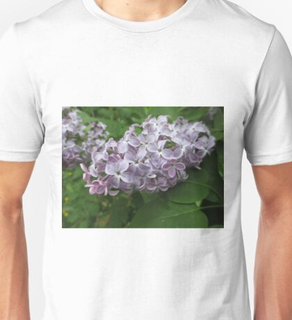 Lilac 4 Unisex T-Shirt
