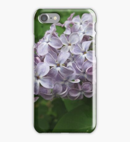 Lilac 4 iPhone Case/Skin
