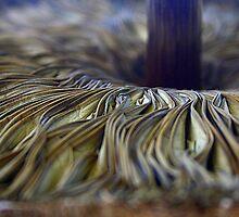 FOLDS OF SATIN by myraj