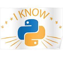 Python Programmer. Gift for Progrogammer Poster