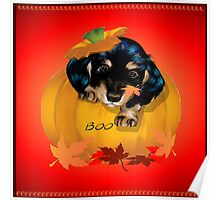 Puppy in a Pumpkin Poster
