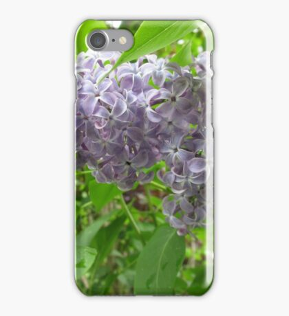 Lilac 3 iPhone Case/Skin
