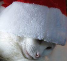 Junior Shy Santa Sticker