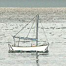 Boat at Beer by SWEEPER