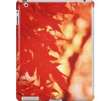 Sunlight Behind Vintage Autumn Leaves 2 iPad Case/Skin